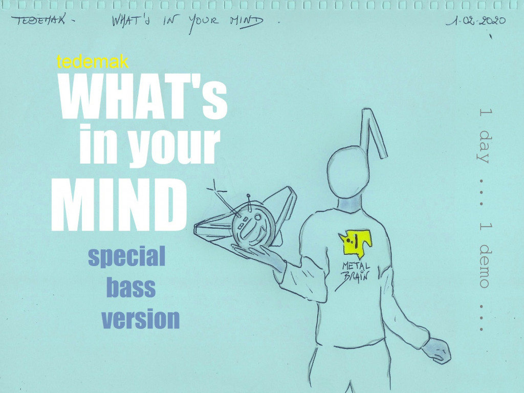 TEDEMAK - What's in your mind (special bass)